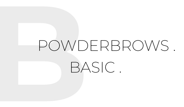 PowderBrows Basic